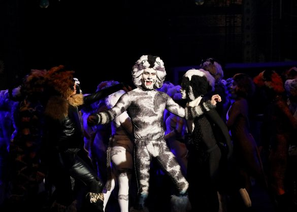 'Cats' // Queensland Musical Theatre