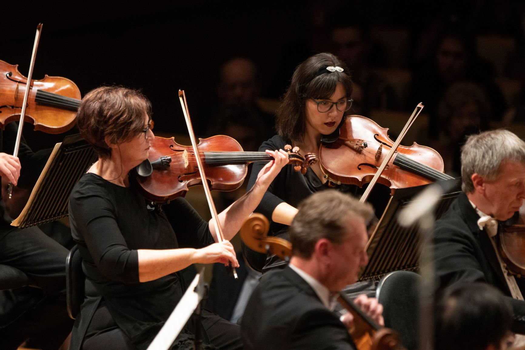Queensland Symphony Orchestra - The Studio Session
